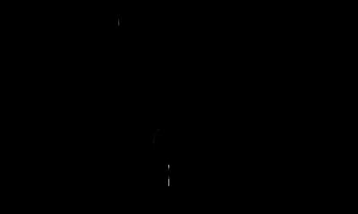 Burnie Community House logo