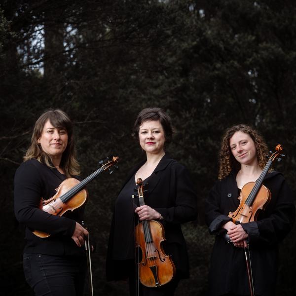Homeward, Van Diemen's Fiddles band