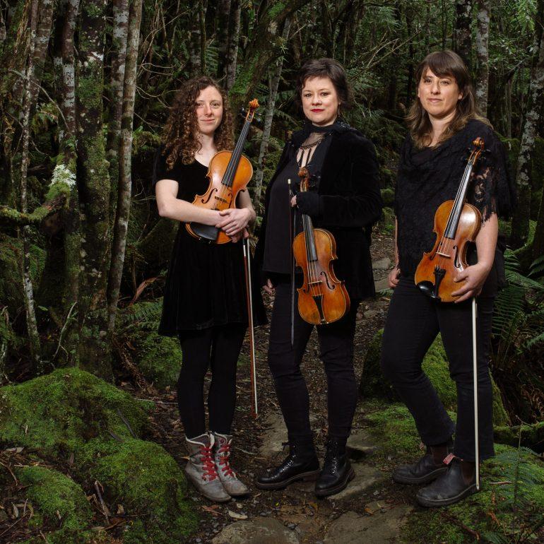 Van Dieman's Fiddles hero image